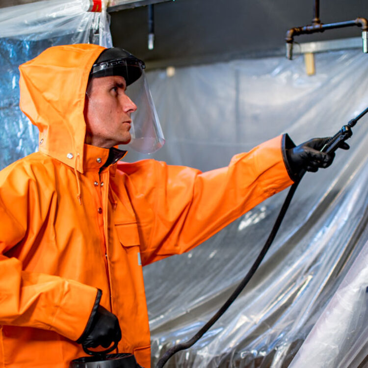 HOODZ service tech cleaning kitchen hood